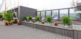 1419208601_new-decking-project.jpg
